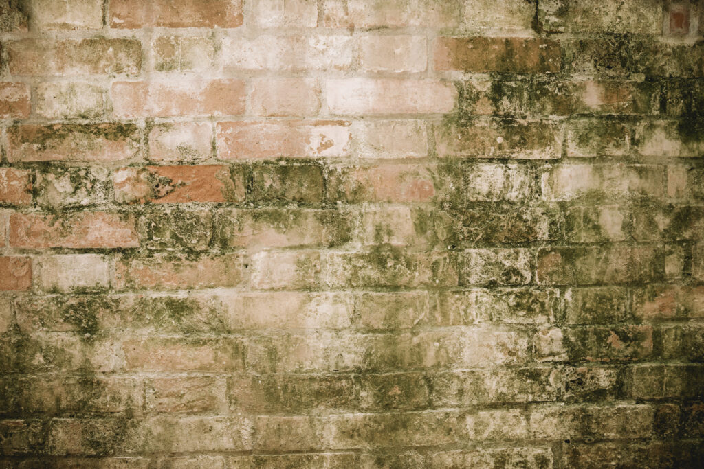 רטיבות בקירות חיצוניים